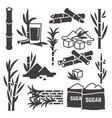 sugar cane sugarcane plant harvest vector image vector image