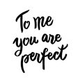 You are perfect calligraphic poster vector image vector image