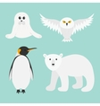 Arctic polar animal set White bear owl king vector image vector image