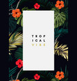dark tropical design with exotic monstera vector image