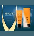 design of cosmetics advertising vector image vector image