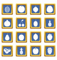 fruit icons set blue vector image vector image