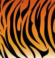 Tiger pattern vector image vector image