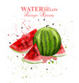 watercolor watermelon fruit fresh and vector image