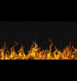 background fire flames vector image vector image