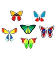 Colorful butterfly icons and tattoos vector image vector image