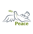 flying dove with olive branch vector image vector image