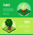 plants and trees for park design posters vector image