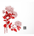 red chrysanthemum flowers in oriental style on vector image vector image