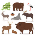 animal animalistic character in forest bear vector image vector image