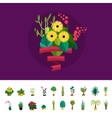 Bouquet of flowers Birthday bouquet flowers vector image