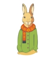 Colourful winter Hare vector image