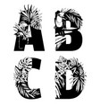 decorative set tropical pattern letters alphabet vector image