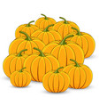 pile of orange pumpkins on a white background vector image vector image