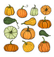 set decorative orange and green pumpkins hand vector image vector image