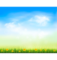 Summer gaze background with blue sky and a field vector image vector image