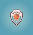 basketball sport team shield colored emblem vector image
