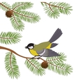 Bird Titmouse on Pine Branch vector image vector image