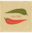 chili poster vector image