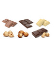 chocolate with nuts cocoa dessert bars with vector image