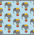 elephant in circus pattern vector image vector image