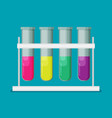 flat multicolor test tubes liquid in rack vector image vector image