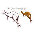 kangaroo coloring page on white background vector image