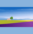 lavender field mountains and trees vector image vector image