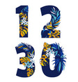 decorative set tropical pattern numbers figures vector image vector image
