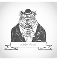 head ferocious bulldog mascot vector image vector image