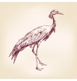 Japanese crane hand drawn llustration realistic vector image