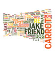 let s say you re a dog are you so competitive you vector image vector image