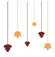 maple leaves foliage hanging decoration vector image vector image