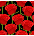 seamless background with red roses on black vector image vector image