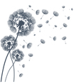 Abstract fluffy dandelion flower vector image vector image