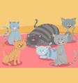 cute cats or kittens animal characters group vector image vector image