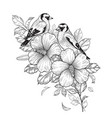 hand drawn goldfinches sitting on hibiscus branch vector image vector image