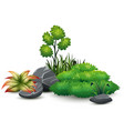 little green plant botanical landscape vector image vector image