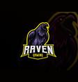 raven mascot sport logo design vector image vector image