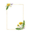 watercolor hand painted frame with meadow vector image vector image