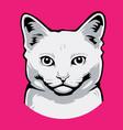 cat head icon anima vector image vector image