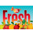 fresh fruit vector image vector image