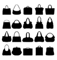 handbags vector image vector image
