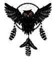 owl with dreamcatcher vector image vector image