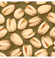 pistachio nuts vector image vector image