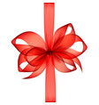 red transparent bow and ribbon top view vector image vector image