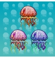 three color spotted jellyfish vector image vector image