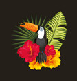 tropical black background vector image vector image
