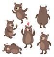bears cute set vector image
