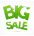 Big Sale Green Sticker - Label on Grey Background vector image